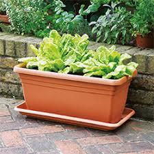 garden-pots-sale